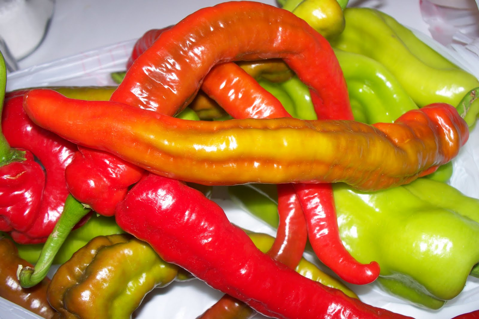 Monster Hot Cayenne pepper seeds